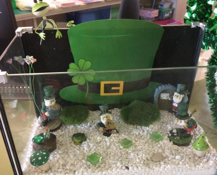 Fairy Garden St Patrick's Day 2016