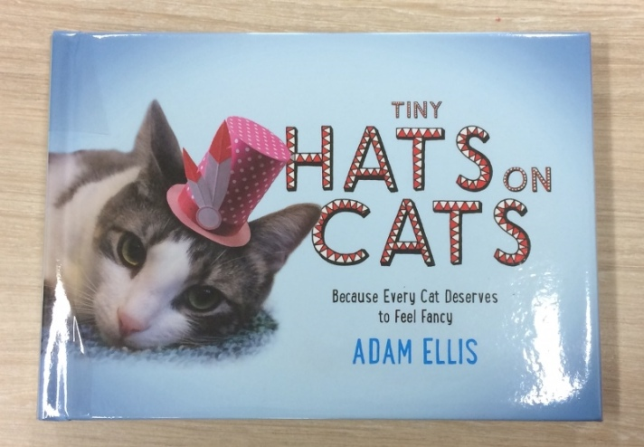 Tiny Hats on Cats by Adam Ellis
