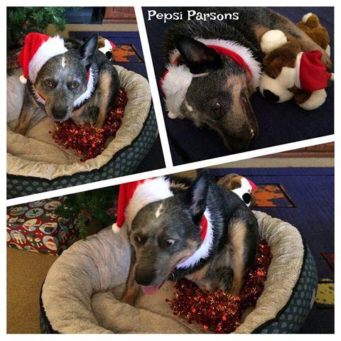 pepsi-parsons-christmas-eve