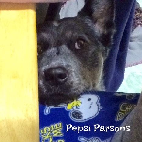 pepsi-parsons-hopeful-at-breaksfast